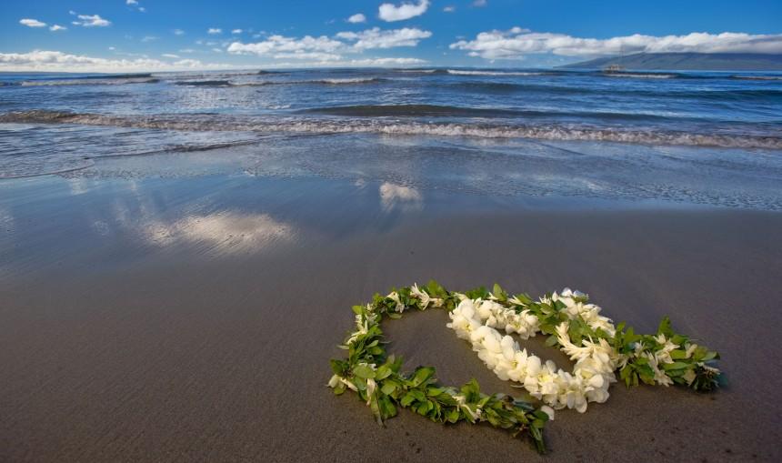 Hawaiian wedding lei