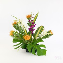 Pincushions and orchids - With Our Aloha