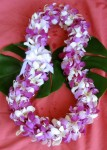 deluxe.mixed.orchid.lei