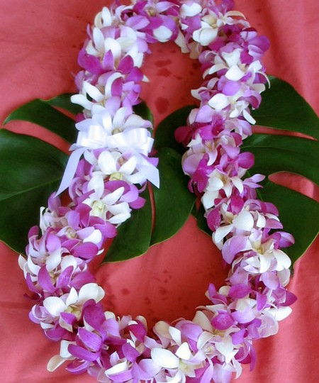 Hawaiian lei mixed orchids deluxe size