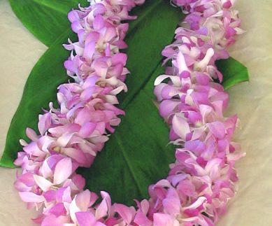 Lavender Leis