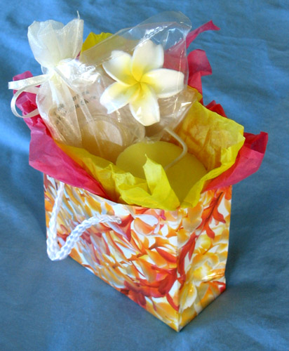 mini hawaiian gift bag plumeria