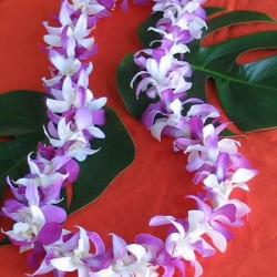 mixed.orchids.fresh.lei