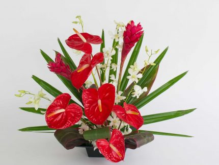 red anthurium ginger orchids - With Our Aloha