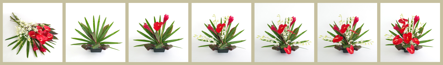 With Our Aloha - how.arrange.anthurium.ginger