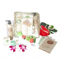Hawaiian spa gift basket deluxe