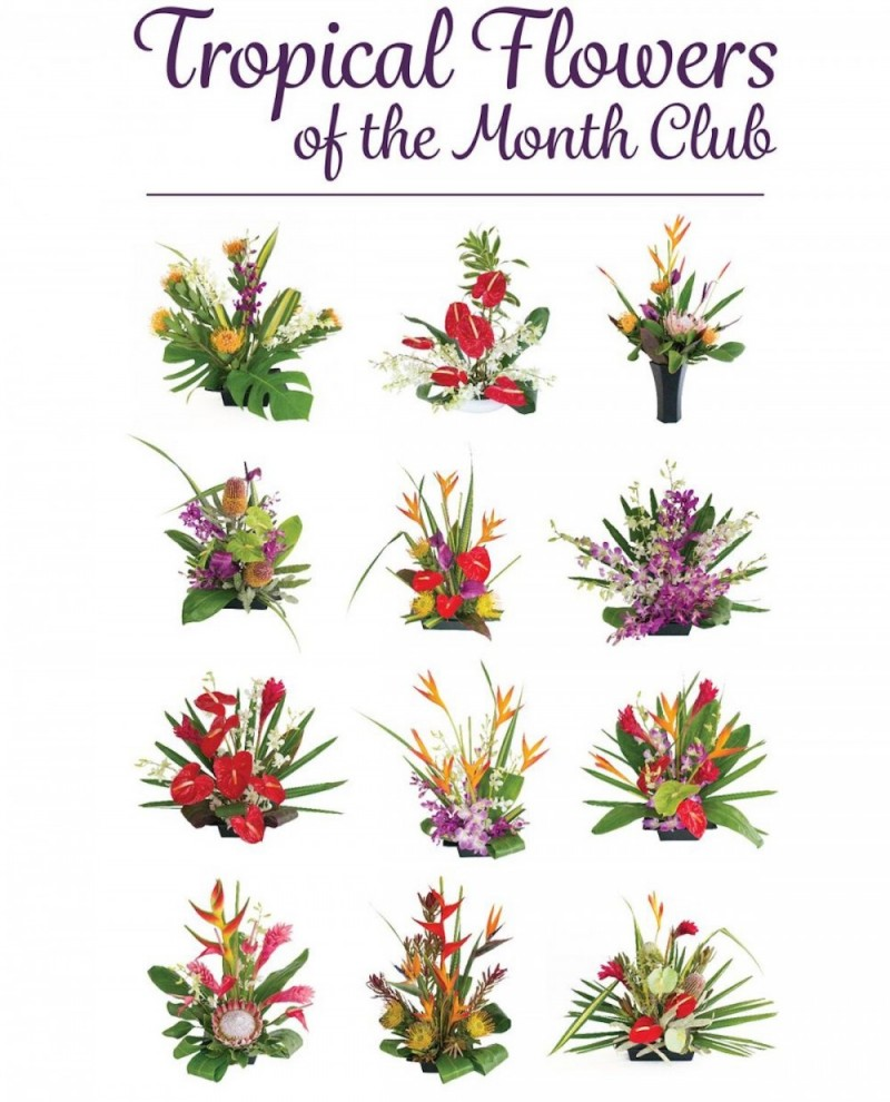 Hawaiian flowers for every month