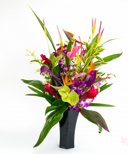 supreme tropical flower mix With Our Aloha
