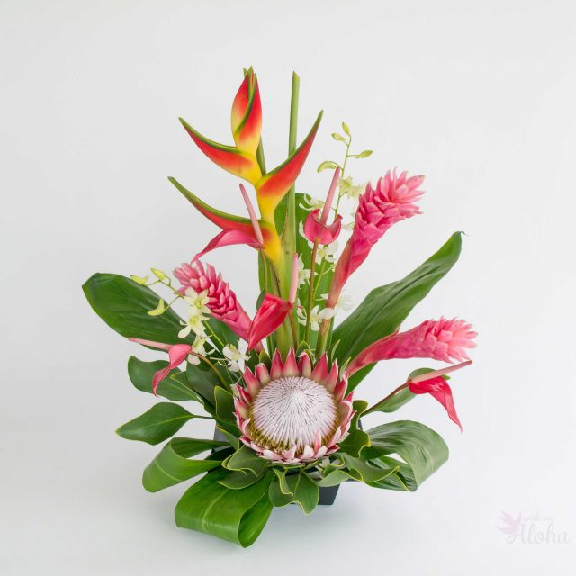 Hawaiian Flowers of the Month - Pink Hawaiian flowers with king protea