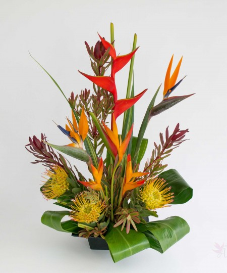 tropical assortment flowers