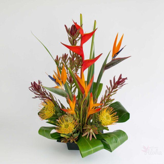 tropical assortment flowers