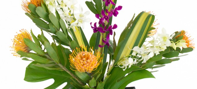 Monthly Hawaiian Flower Assortments </br> This is truly the gift that keeps on giving. With a monthly subscription flowers arrive fresh each month. Subscriptions are customizable with frequency, stem count, and number of arrangements. Being from a tropical region, they last longer than most flowers and are guaranteed to fill a room with Aloha.