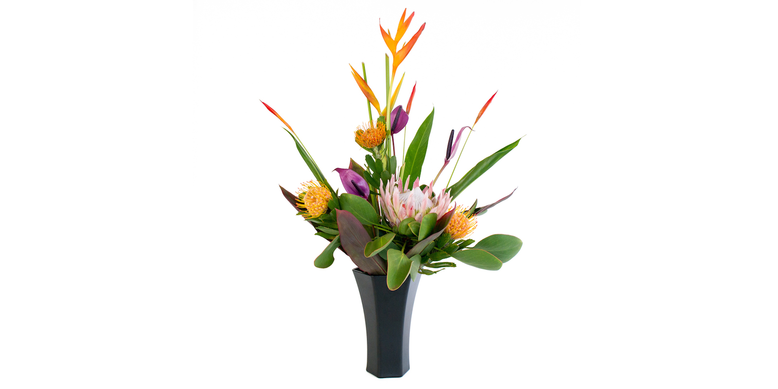 tropical flowers with protea, heliconia, purple arc anthurium