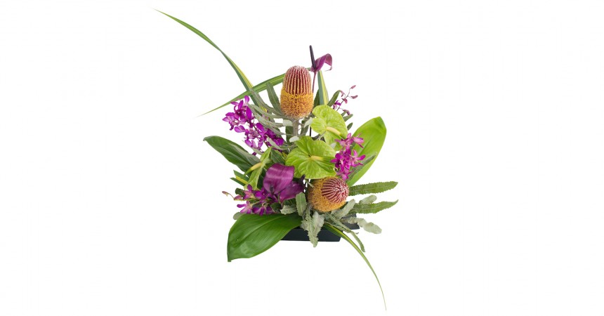 tropical flowers and protea purple and green
