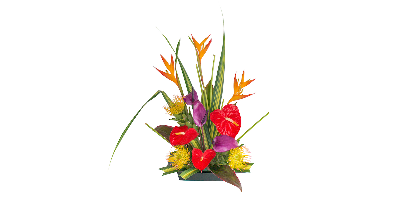 tropical flowers for Mother's Day