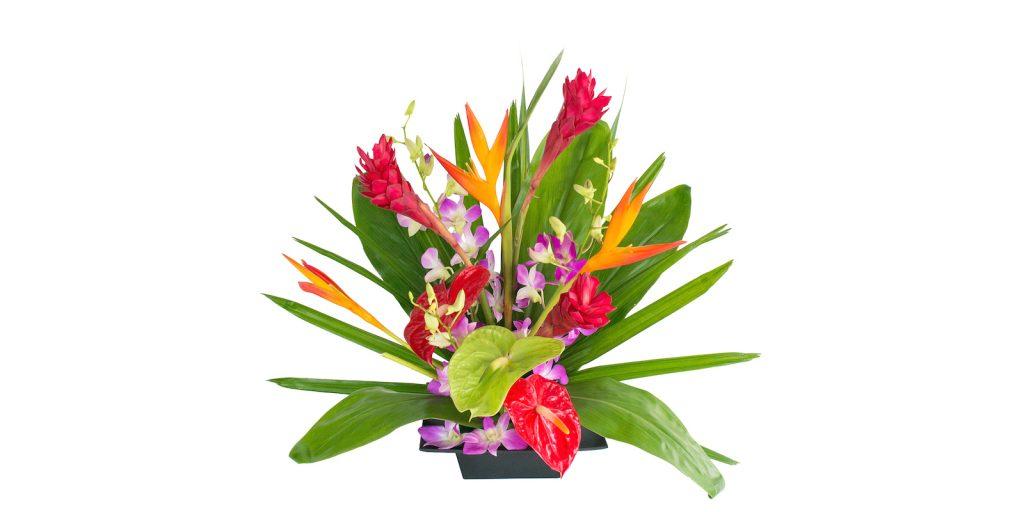 Hawaiian friendship flowers