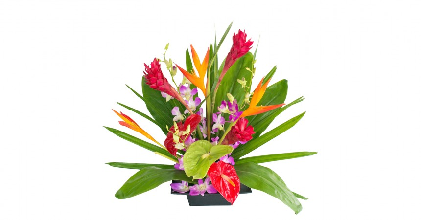 Hawaiian friendship flowers