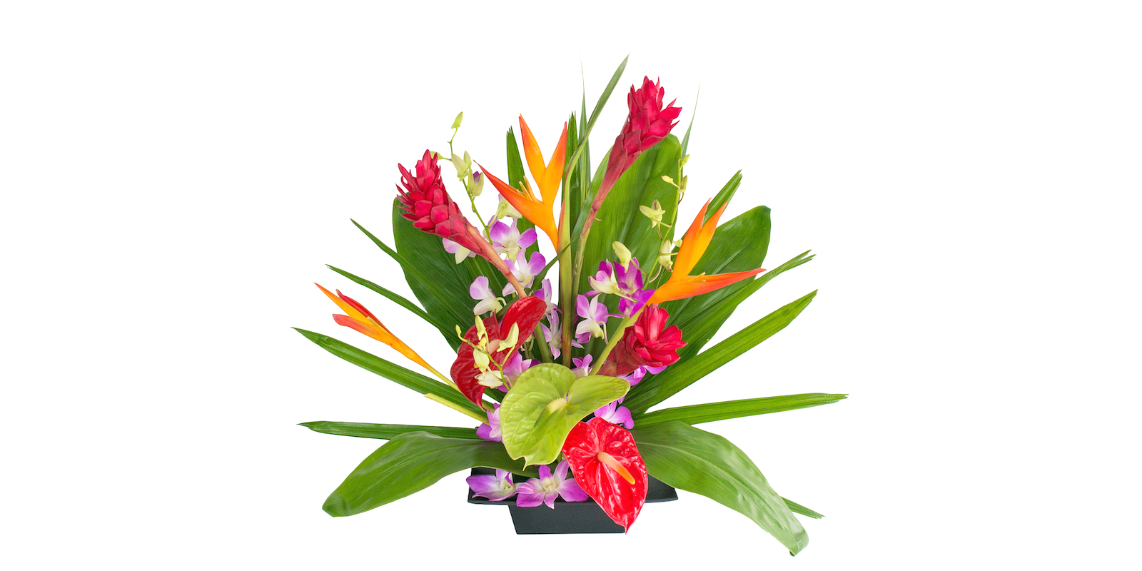 friendship flowers from Hawaii