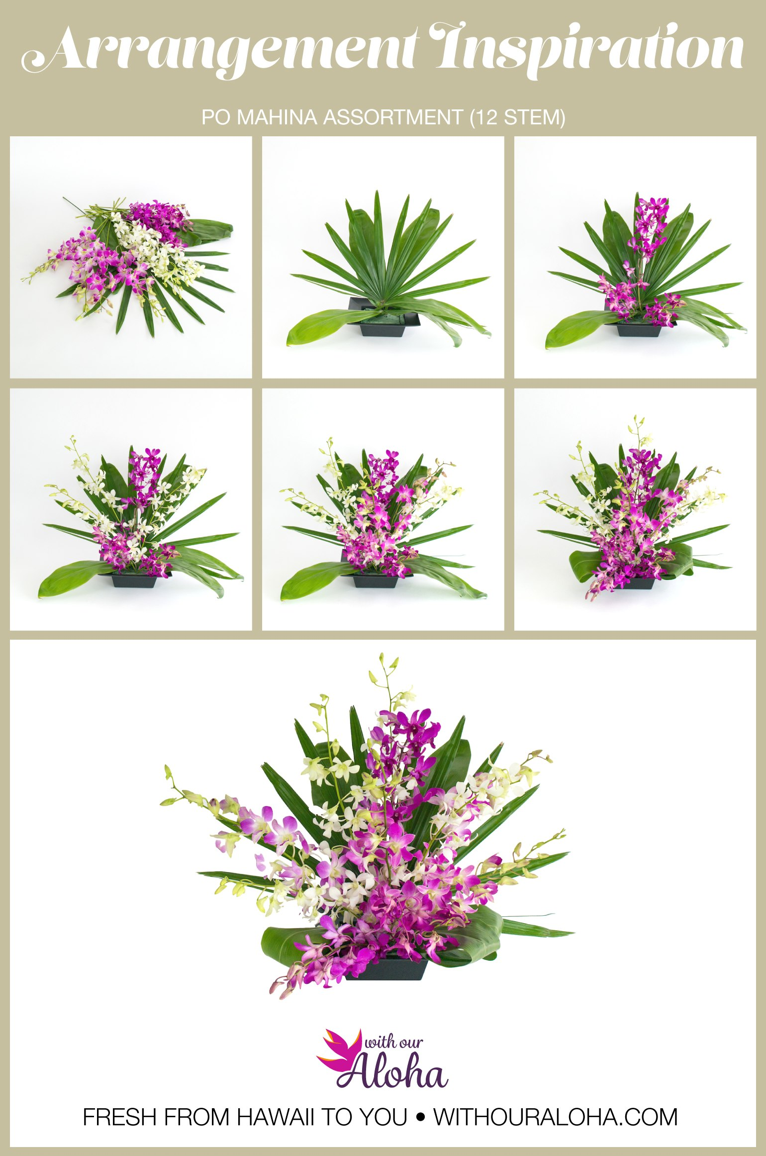 Orchids DIY
