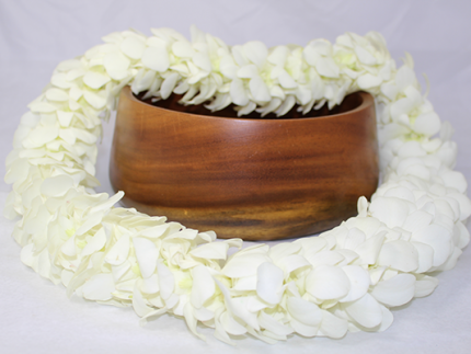 White Hawaiian flower lei