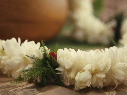 tuberose lei fragrant white double size
