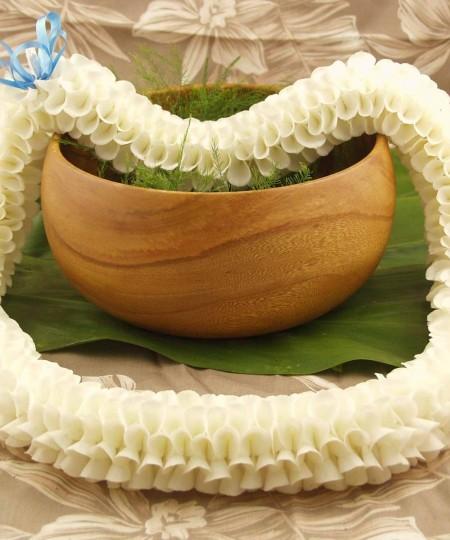 Flora lei white Hawaiian orchid lei