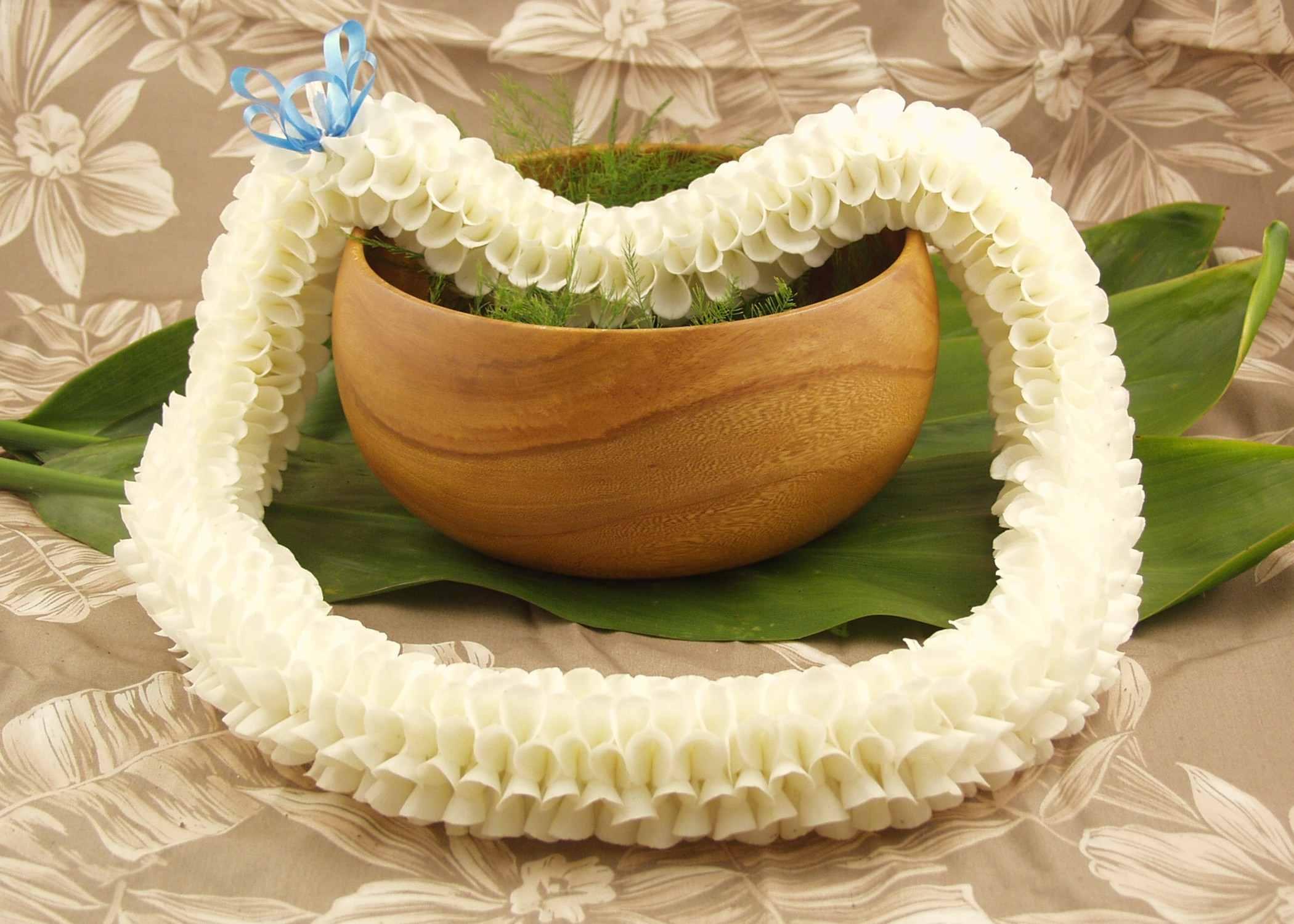 Flora lei hawaiian white orchid lei flora lei izmirmasajfo
