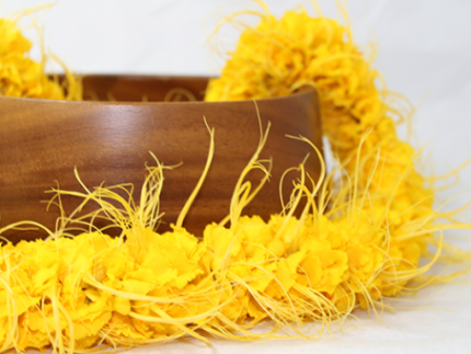 Yellow Leis