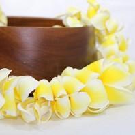Hawaiian plumeria lei