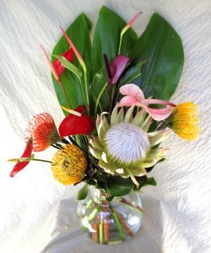 protea mix flowers from Maui
