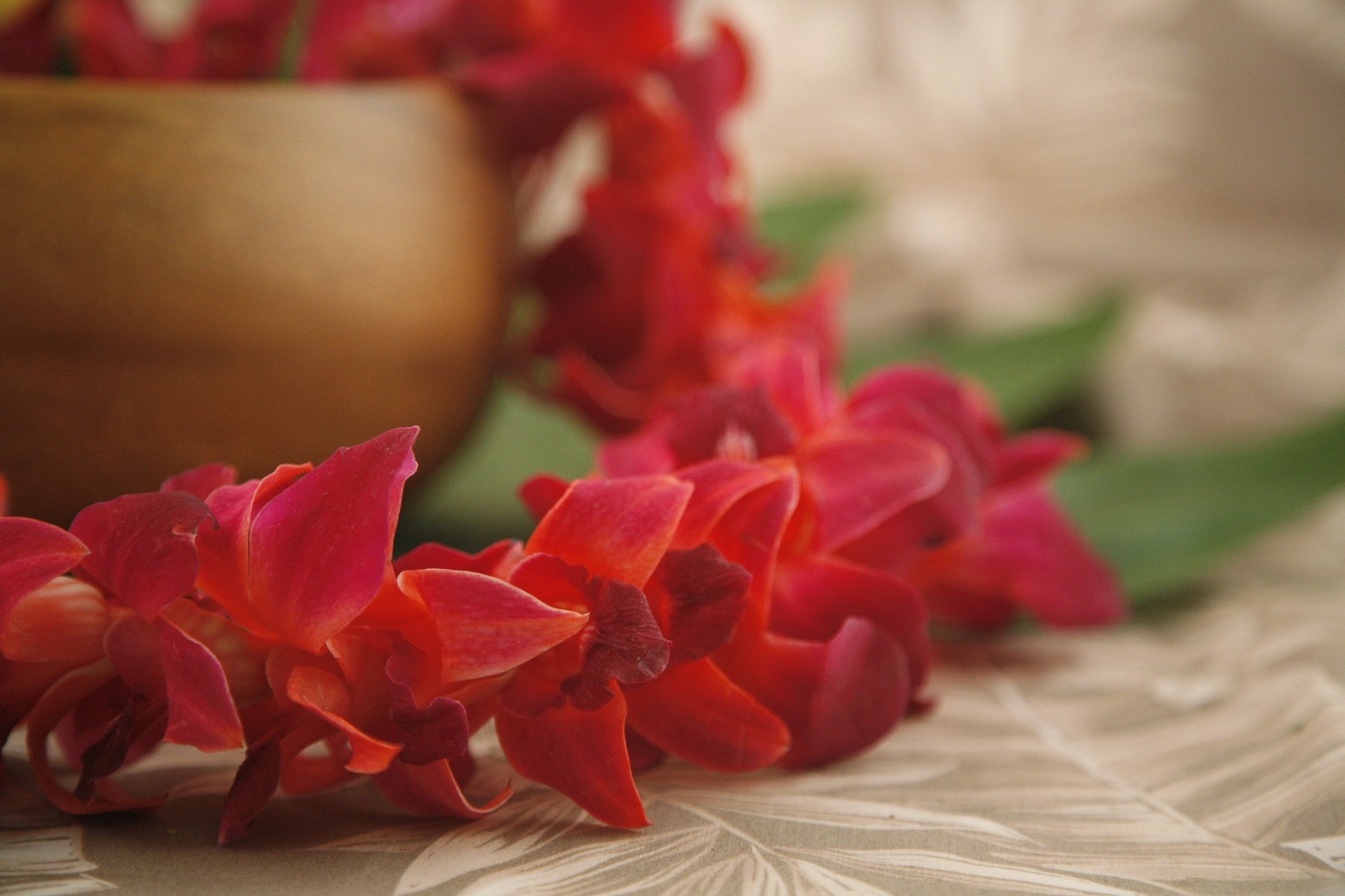 color orchid leis graduation red