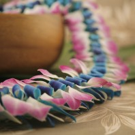blue and pink lei