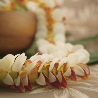 yellow and white orchid lei Napili
