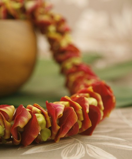 yellow color orchid lei
