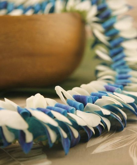 Pipeline blue and white lei